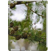 Fir Tree.........Lyme Dorset UK iPad Case/Skin