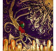 Elf in Tree Photographic Print