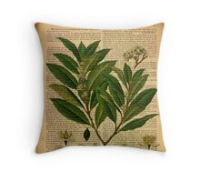 Botanical print, on old book page Throw Pillow