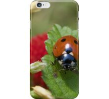 In the Berry Patch iPhone Case/Skin
