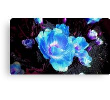Night Blossom Canvas Print