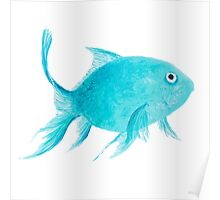 Turquoise fish Poster