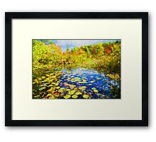 Autumn Lily pads  Framed Print