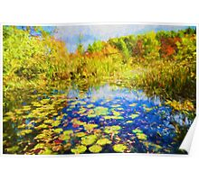 Autumn Lily pads  Poster