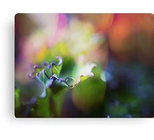 Super macro photography - water drop on the green leaf Canvas Print