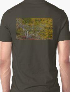 Autumn Colours, Iceland in September Unisex T-Shirt