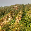 This Is Australia .. Blue Mountains Vista by Michael Matthews