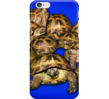Greek Tortoise Group - Dark Blue iPhone Case/Skin