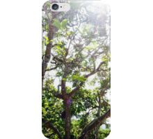 Fairy lights - spring trees iPhone Case/Skin