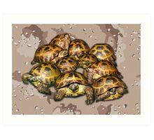 Greek Tortoise Group - Desert Camo Background Art Print