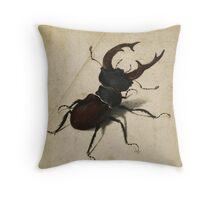 Vintage famous art - Albrecht Durer - Stag Beetle 1505 Throw Pillow