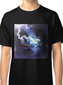 Don't Fly During Storms Classic T-Shirt