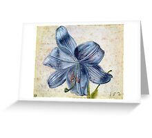 Vintage famous art - Albrecht Durer - Study Of A Lily Greeting Card