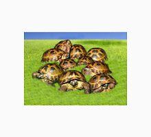 Greek Tortoise Group on Grass Background Unisex T-Shirt