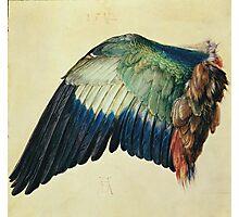 Vintage famous art - Albrecht Durer - Wing Of A Blue Roller Photographic Print