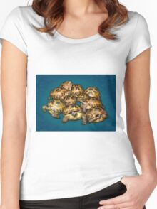 Greek Tortoise Group on Gray-Blue Background Women's Fitted Scoop T-Shirt