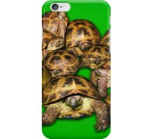 Greek Tortoise Group on Bright Green Background iPhone Case/Skin