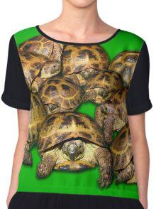 Greek Tortoise Group on Bright Green Background Chiffon Top