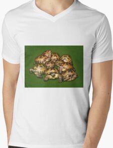 Greek Tortoise Group on Darn Green Background Mens V-Neck T-Shirt