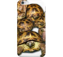 Greek Tortoise Group iPhone Case/Skin
