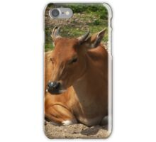 Mom and the baby iPhone Case/Skin