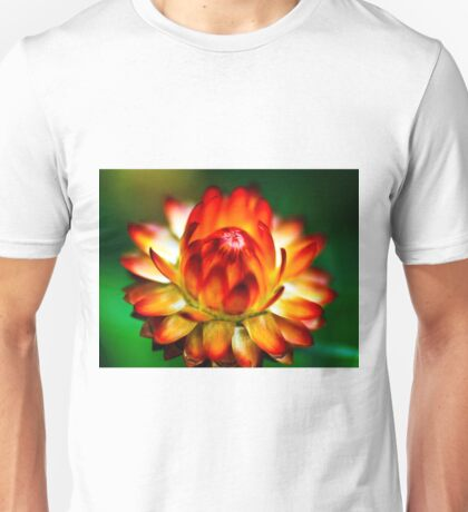 The Strawflower Unisex T-Shirt
