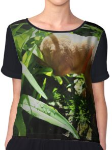 GOING TO GET LULU THIS WEEK CANT WAIT  Chiffon Top