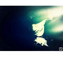 Submersion: Eternal Photographic Print