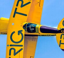 Pitts S-1D Special G-IIIP Sticker
