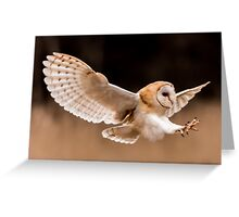 Barn Owl Attack Greeting Card