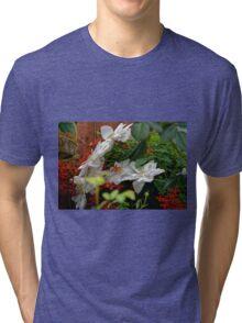 draw the eye Tri-blend T-Shirt