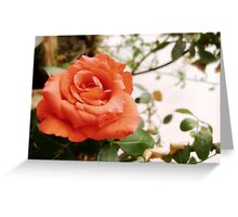 Letter to Juliet Greeting Card