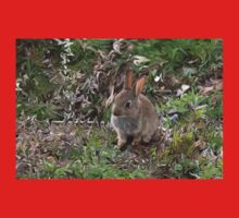 Baby Rabbit digitally altered. One Piece - Long Sleeve