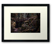 Puzzlewood Framed Print