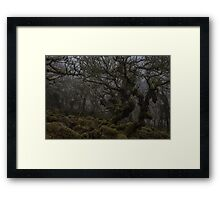 Ghostly forest Framed Print