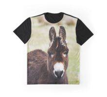 Irish Donkey Graphic T-Shirt