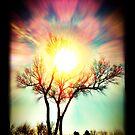 Tree  by taylormorrill