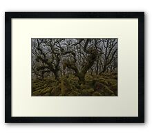 Monsters in the Mist Framed Print