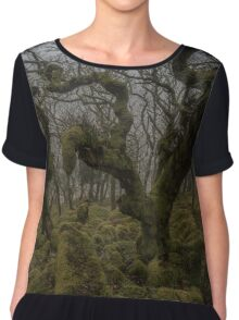 Monsters in the Mist Chiffon Top