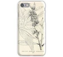 Southern wild flowers and trees together with shrubs vines Alice Lounsberry 1901 168 Goldon Rod iPhone Case/Skin