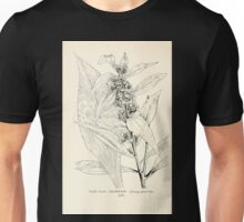 Southern wild flowers and trees together with shrubs vines Alice Lounsberry 1901 168 Goldon Rod Unisex T-Shirt