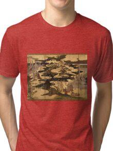 Japanese Art  Tri-blend T-Shirt