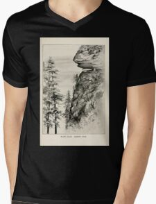 Southern wild flowers and trees together with shrubs vines Alice Lounsberry 1901 146 Caesar's Head Mens V-Neck T-Shirt