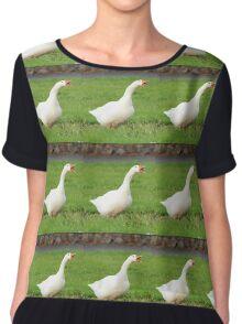 Goose bird print Women's Chiffon Top