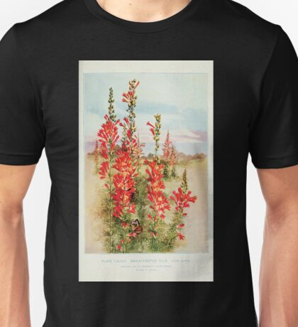Southern wild flowers and trees together with shrubs vines Alice Lounsberry 1901 147 Raven Footed Gilia Unisex T-Shirt