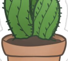 Tiny Cactus Sticker Sticker