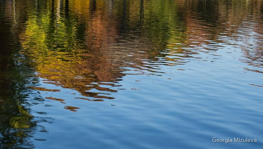 Reflecting on Autumn  by Georgia Mizuleva