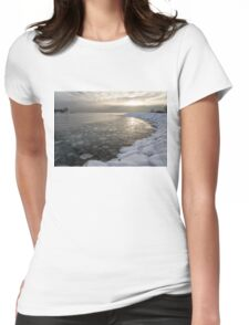 Mini Ice Floes on the Lake Womens Fitted T-Shirt