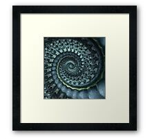 Pacifico Framed Print