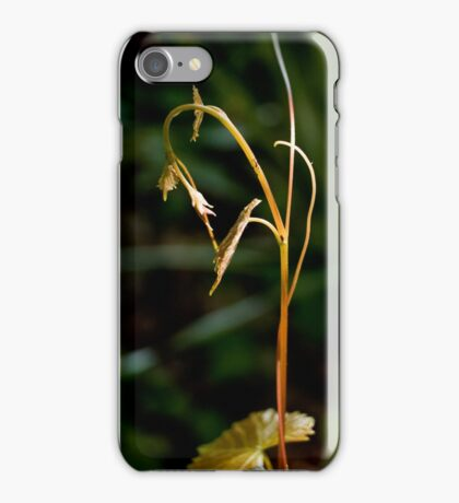 Searching iPhone Case/Skin